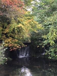 Waterfall at Lindors